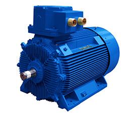 Motor B5N - MarelliMotori